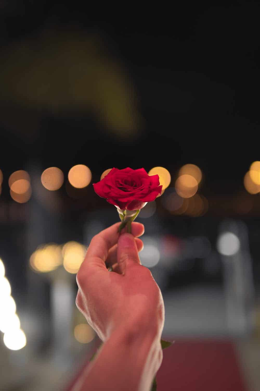 Bachelorette / https://www.pexels.com/photo/person-holding-red-rose-1324994/
